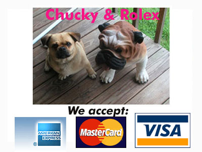 Dogs-Creditcards.jpg